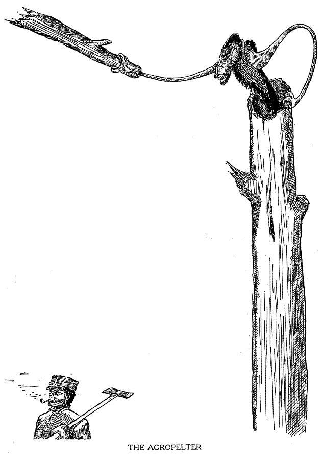 Agropelter (public domain)