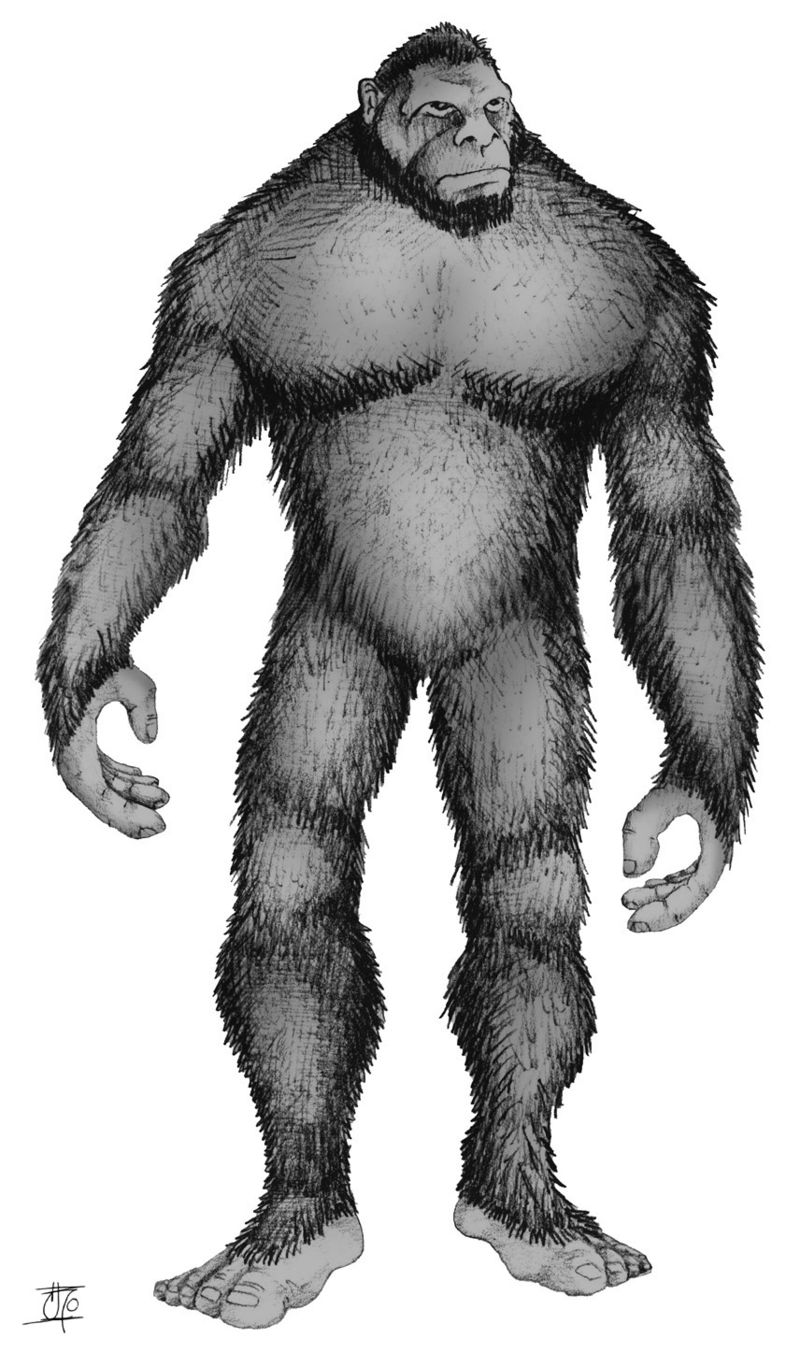 Sasquatch/Bigfoot (public domain)