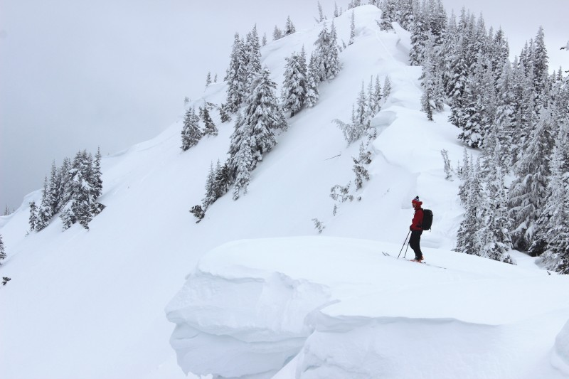 Jeremy Allyn '93, a professional observer with the Northwest Avalanche Center, stands in the backcountry near Crystal Mountain ski resort.