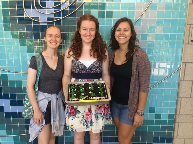 """2014 Annual University of Puget Sound Research-inspired Dessert Contest. In 2014 our lab won the coveted """"most tasty"""" prize for our entry (Arabidopsis and tomato plants growing in our chocolate cake garden plot), here presented by Grete Slaugh '15 (left), Molly Jennings '17 (middle), and Jacie Ihinger '15 (right)."""