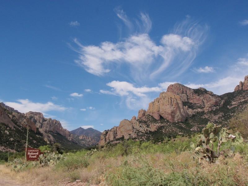 View into Cave Creek Canyon, Cochise County, AZ