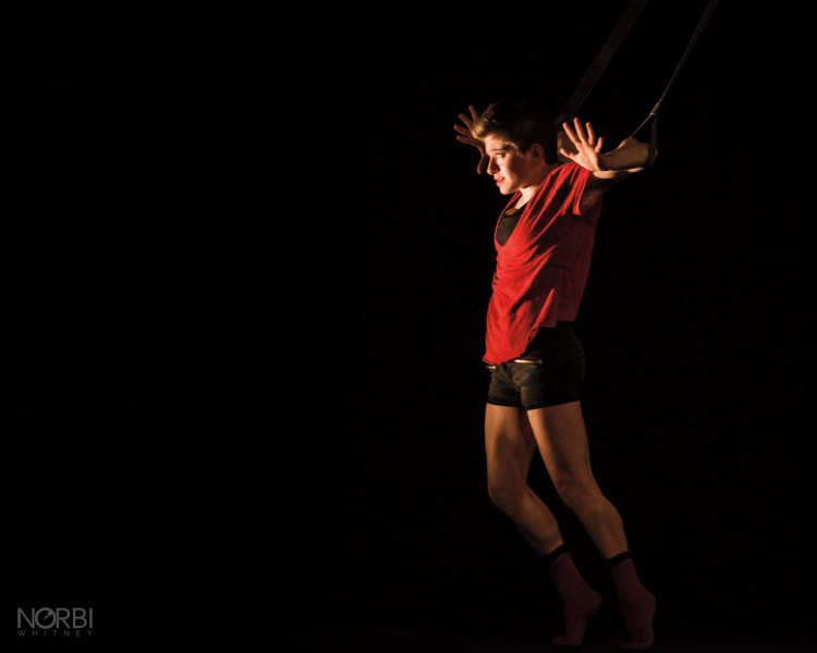 Zoe Stasko '14, a circus artist with Washington, D.C.-based Alter Circus, performs a routine on the aerial straps.