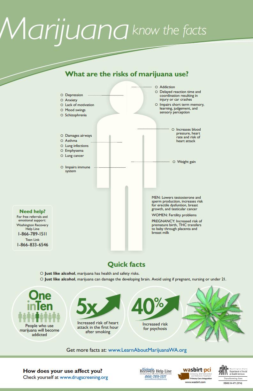 Marijuana facts infographic
