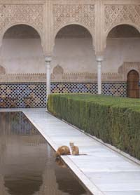 "Honorable Mention-Places- Rachel Gross ""Alhambra from the Albaycin"" Granada, Spain"