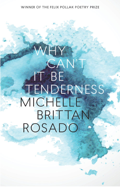 Why Can't It Be Tenderness by Michelle Brittan Rosado